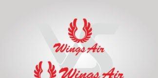 Free Download Wings Air Logo Vector