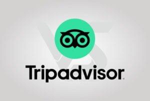 Download Trip Advisor Logo Vector Vertical