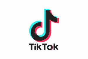 Download TikTok Logo Vector White
